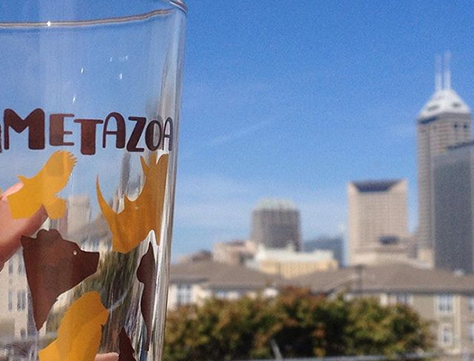 Metazoa Brewing Company will donate 5% of its profits to animal and wildlife organizations.
